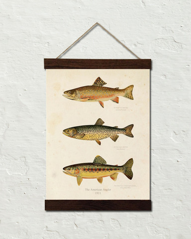 24x30_Trout_Canvas_Bars_Stucco_Wall_Template_large